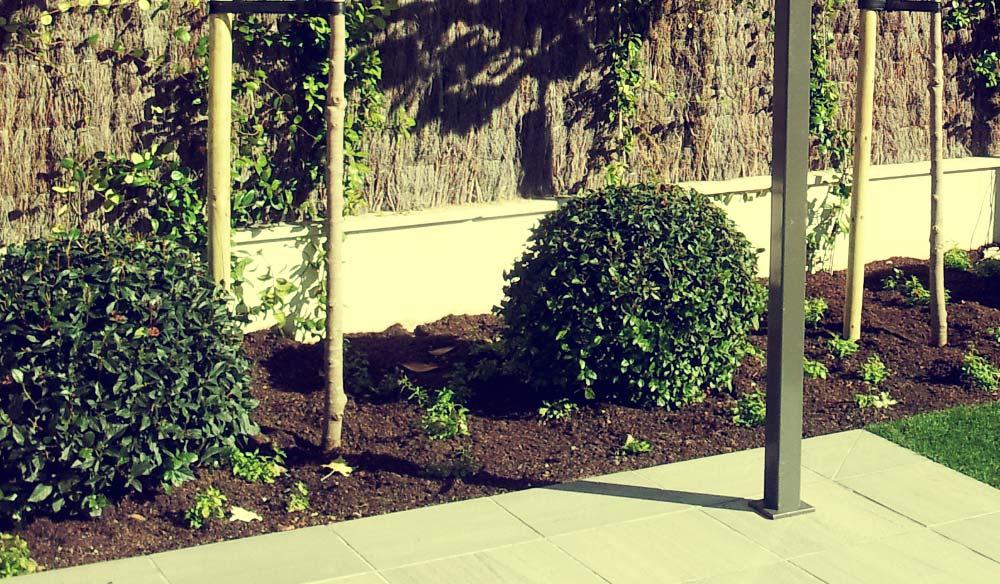 Diseño de jardín y construcción. Drenajes, instalación de riego y recuperación de pradera