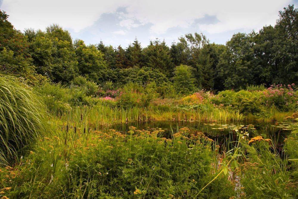 Visita a Jan Wilde een tuin