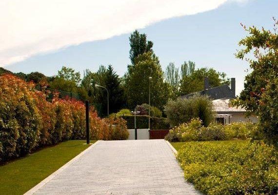planta-paisajistas-jardin-puerta-hierro-2-destac-570x400