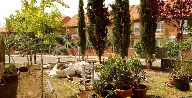 Planta Paisajistas jardineria Aravaca Madrid