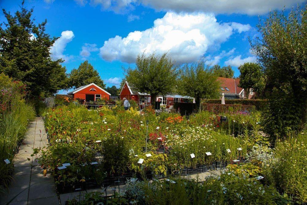 Visita a De Kleine Plantage