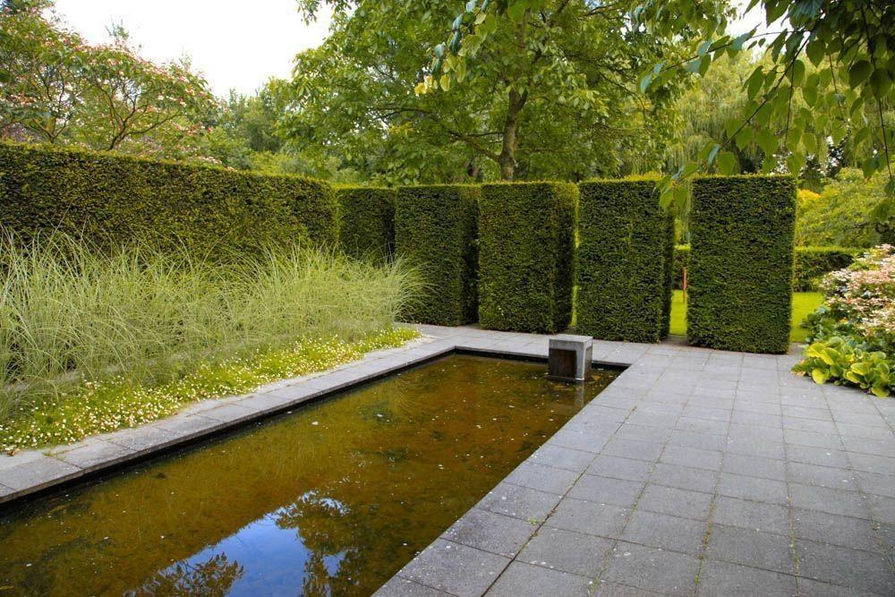 Visita al jardín de Mien Ruys