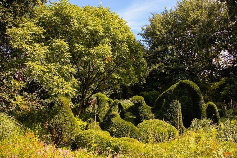 Visita a Priona tuinen
