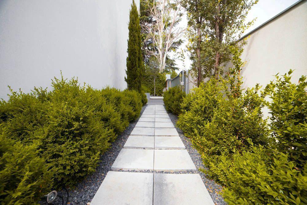PLANTA PAISAJISTAS Ejecución de plantaciones y sistema de riego