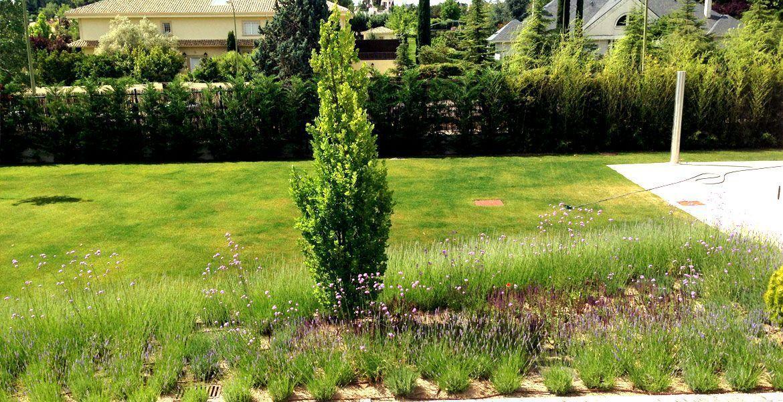ejecucion-jardin-privado-6