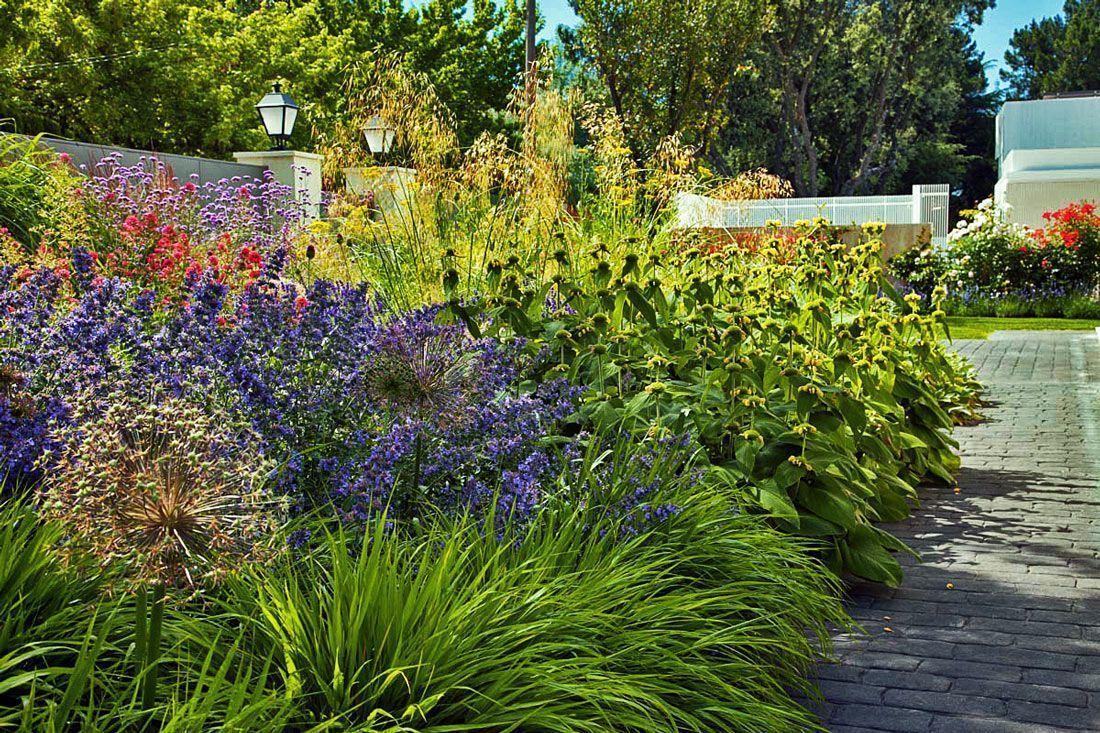 planta-paisajistas-jardin-en-madrid-entrada