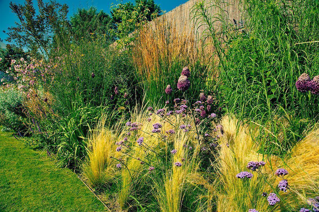 planta-paisajistas-jardin-en-madrid