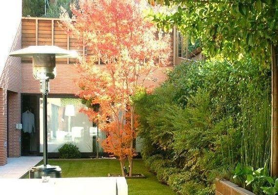 planta-paisajistas-jardin-madrid-destac-570x400