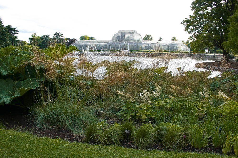 Visita a Kew Gardens