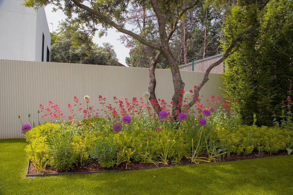 planta paisajistas diseño jardin madrid vivaces